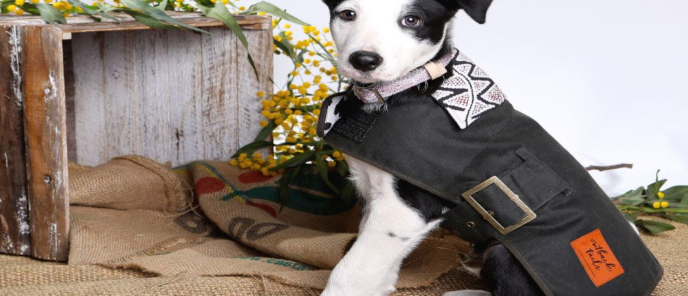 Outback Tails Oilskin Dog Coat - Vaughn Springs